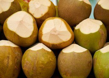 L'importante quantité de déchets générés par les noix de coco sera désormais transformée en composte à Chiang Mai