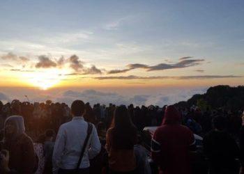 Les Touristes Affluent à Doi Inthanon alors que la Température Chute