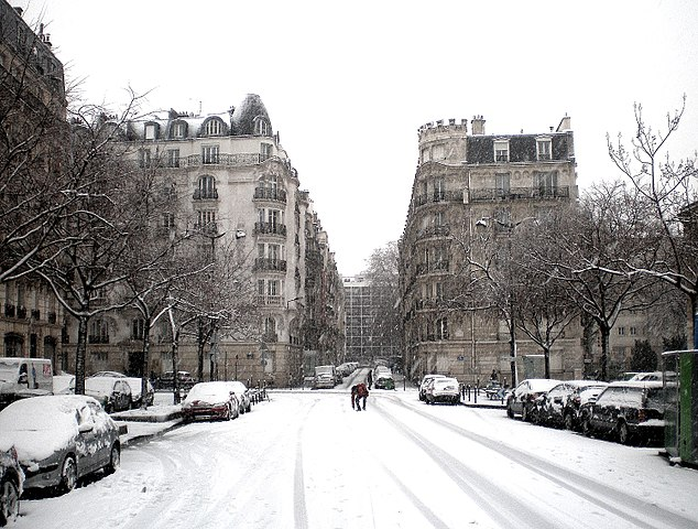 La neige s'est installée en région parisienne et a créé le chaos dans les transports