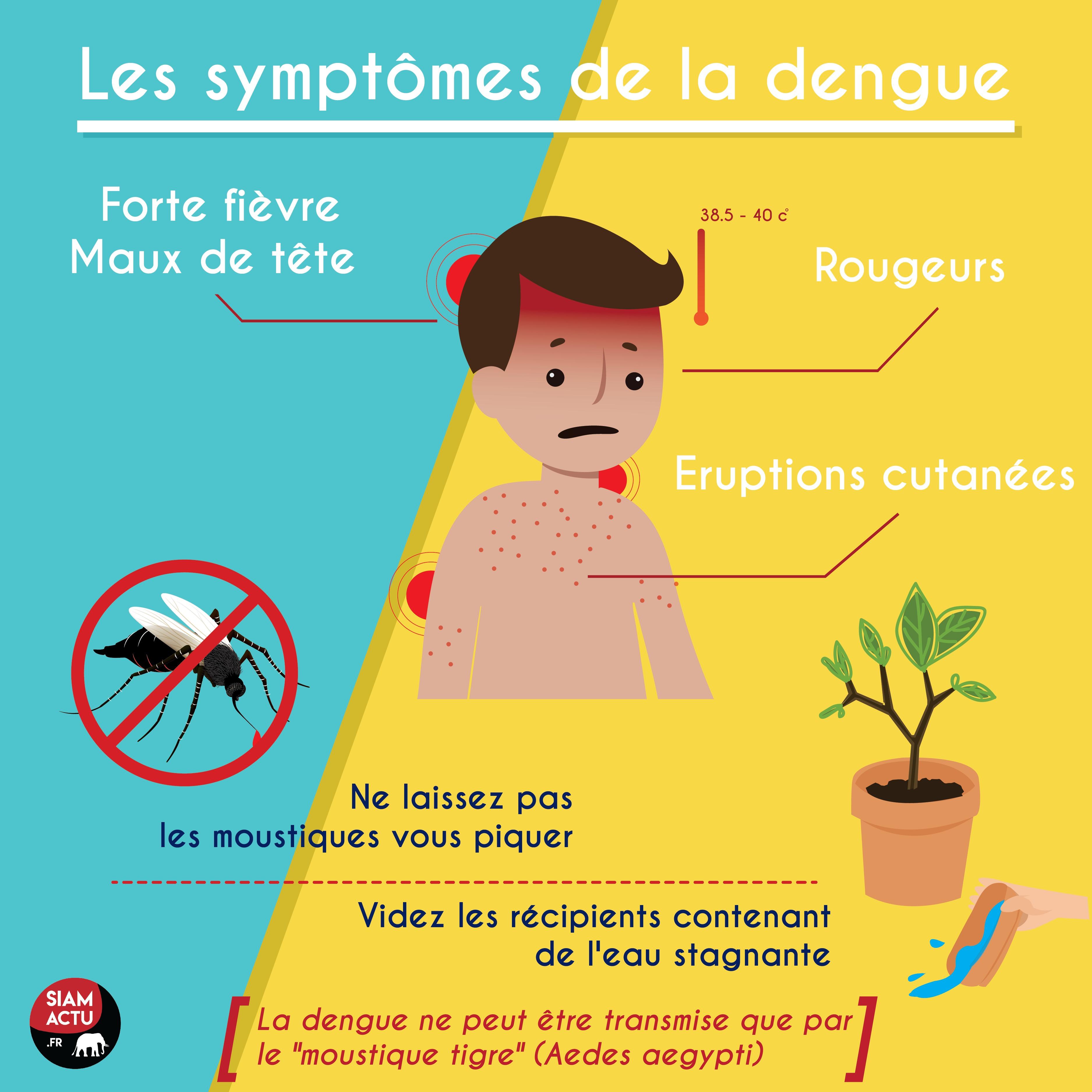 Les symptômes de la dengue