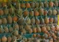 Chiang Rai : des mesures pour faire face à la surproduction d'ananas
