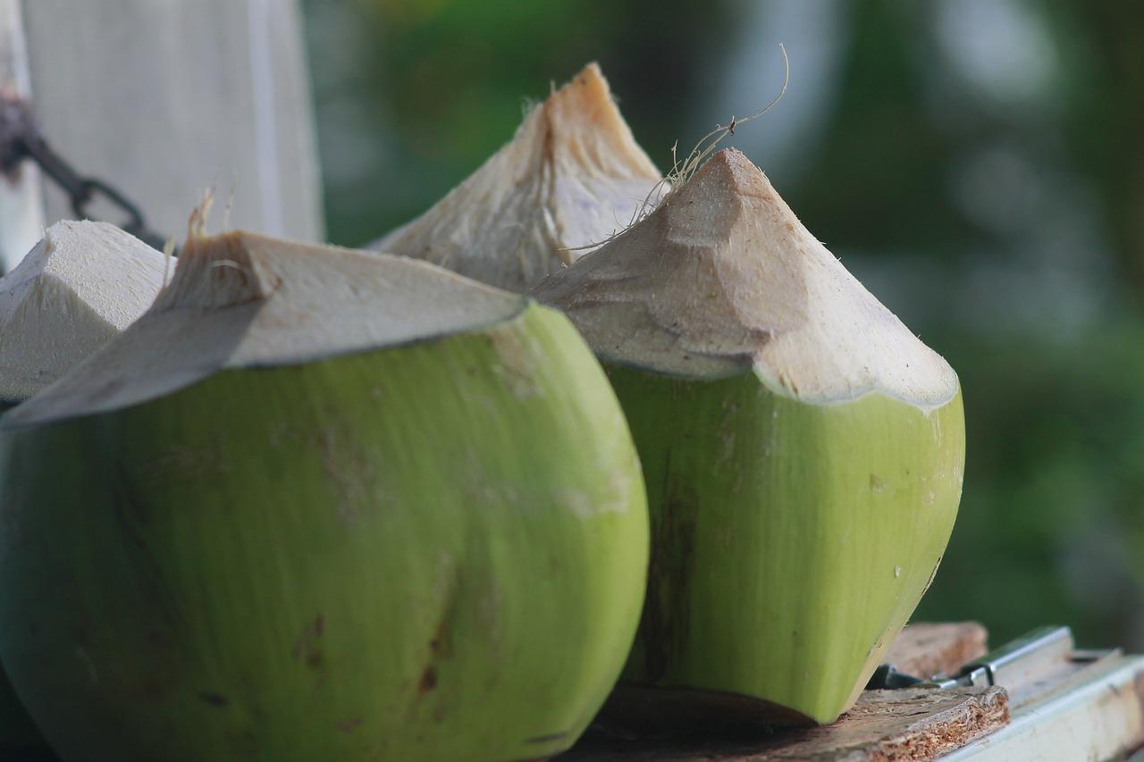 Les producteurs de noix de coco thaïlandais sont confrontés à une baisse des prix, due aux nombreuses importations