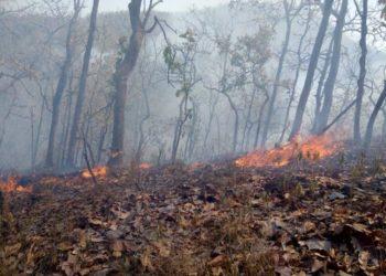 Chiang Mai : la pollution reste à des niveaux préoccupants, des vols déroutés