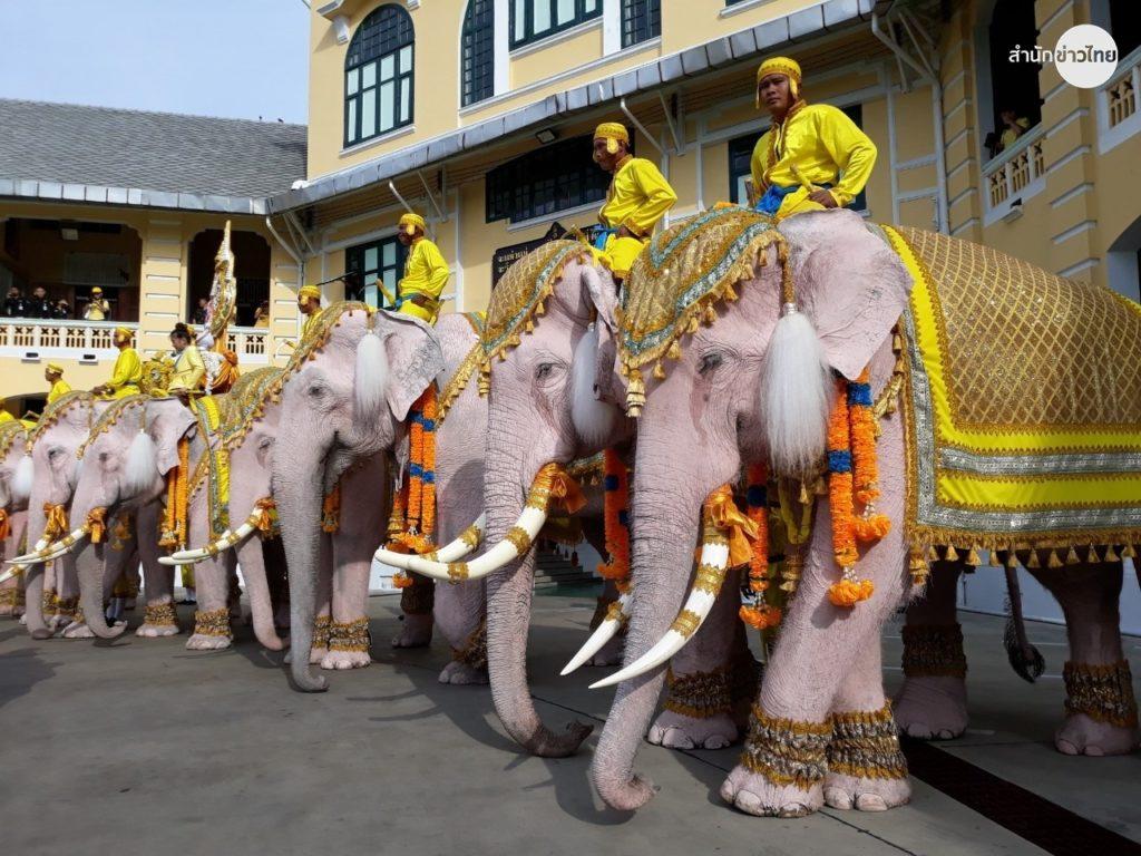 Ayutthaya elephants parade in Bangkok to honour the King of Thailand