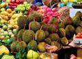 La Thaïlande devient le 6e plus gros exportateur de fruits au monde