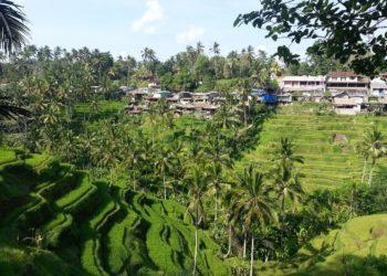 Bali interdit finalement aux touristes étrangers de séjourner sur l'île pour le reste de l'année 2020 en raison du coronavirus Covid-19