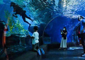 Thaïlande : les mesures de soutien au tourisme domestique pourraient se poursuivre jusqu'à la fin de l'année