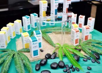 La Thaïlande compte désormais plus de 300 cliniques spécialisées dans le cannabis médical